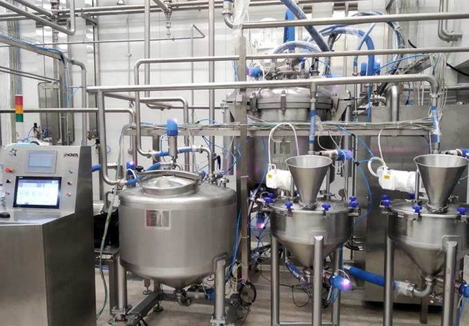 Planta para la producción en batch de mayonesa